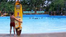 Hurricane Bay y tabla de surf