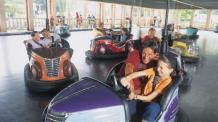 Families enjoying bumper cars