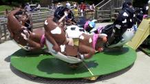 Rodeo bucking bull ride cars