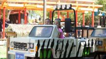 Kids in a mini safari car