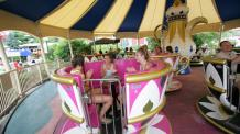 Enchanted Teacups
