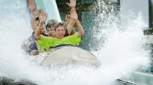 Saw Mill Log Flume