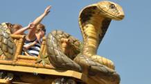 Family on Cobra