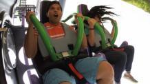 THE JOKER Coaster wing cars