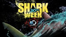 Shark Week at Six Flags Discovery Kingdom