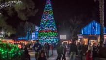 Illuminated Christmas Tree with crowds watching