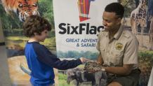 Boy petting lizard with safari staff