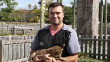 Vet tech holding lion cub