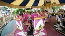 Enchanted Teacups