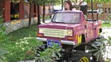 Taz's Trucking Company