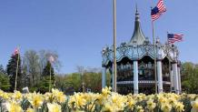 Carousel and Flowers