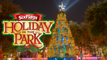 Holiday in the Park Christmas tree lit up at night