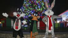 Holiday themed <em>Looney Tunes</em>™ characters