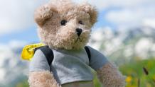 Stuffed Toy - Hiking Teddy Bear