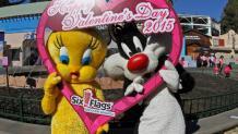 <em>Tweety</em>™ and <em>Sylvester</em>™ on Valentine's Day