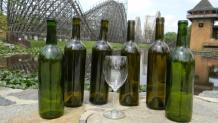 Wine and coaster at Grape Adventure Festival