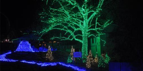 Illuminated holiday scene.