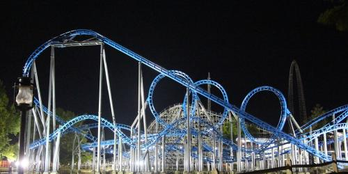 Blue Hawk at Night
