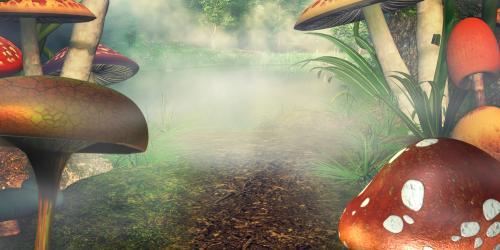 Fantasy land with mushrooms
