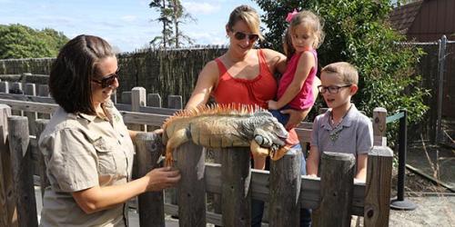 family petting iguana