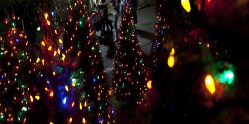 Lights and holiday decor.