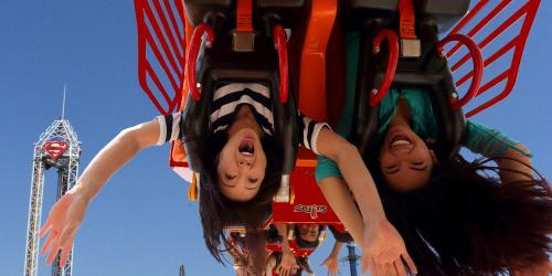 girls hanging upside down on coaster