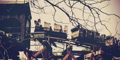 Hughey's Doll Museum Mine Train
