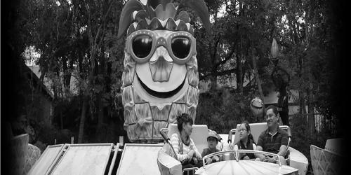 Black and white Piñas Locas