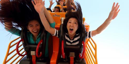 loop coaster riders