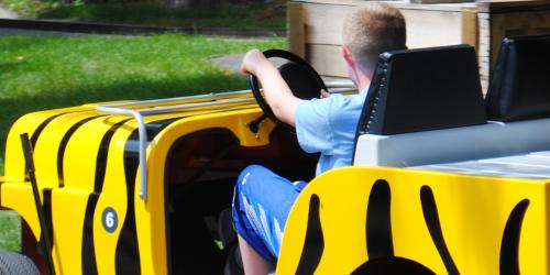 Child driving Wild Wheelz car at Six Flags New England