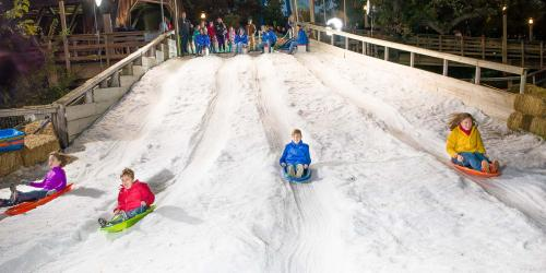 Kids race down the Frosty Snowhill