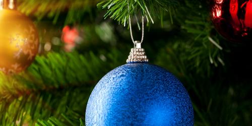 Ornaments on a tree.