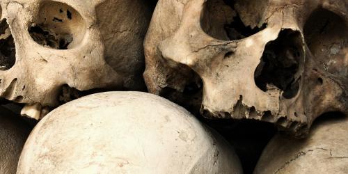 Pile of skulls.