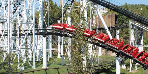 Wide shot of the Ninja roller coaster