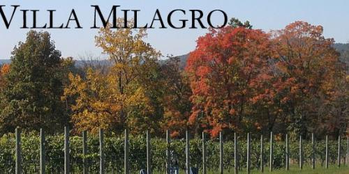 Villa Milagro Vineyards