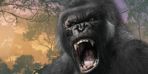 Gorilla ready to attack at Fright Fest