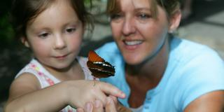 Girl with butterfly inside Butterfly Habitat