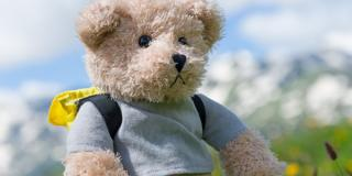 Stuffed Toy - Hiking Teddy Bear