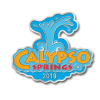 image of calypso springs membership pin
