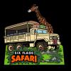 Image of 2019 Safari Membership pin