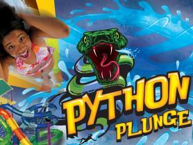 Python Plunge