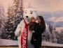 Coca Cola Polar Bear Photo Opportunity