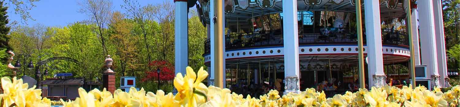 carousel with flowers