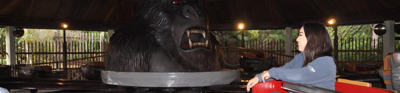 Rider in the car at Thrilla Gorilla