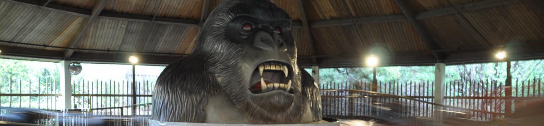 Cars are speeding around the gorilla in the center