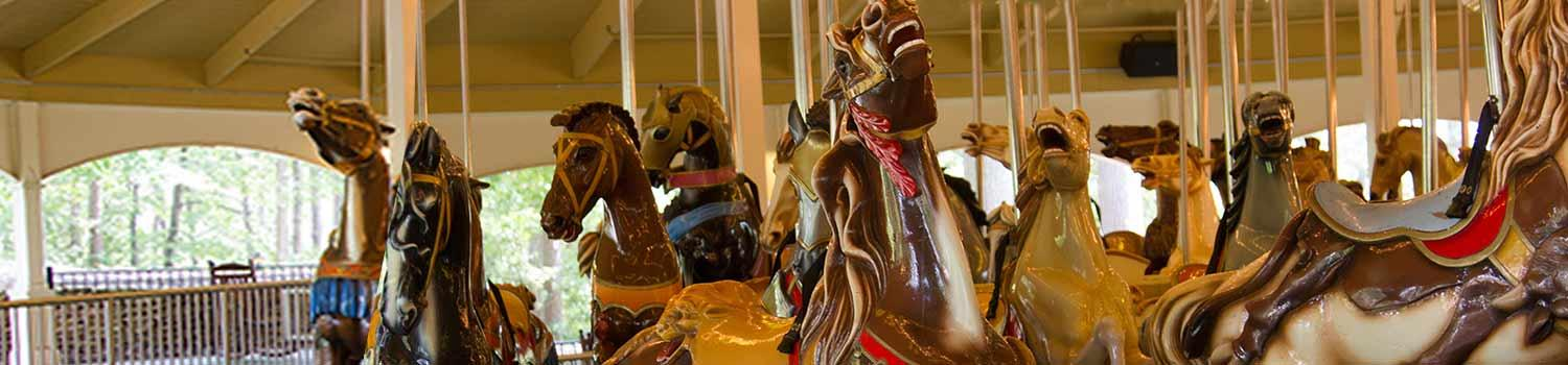 Guest on The Riverview Carousel