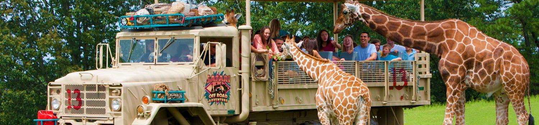 Class on Safari Off Road Education tour