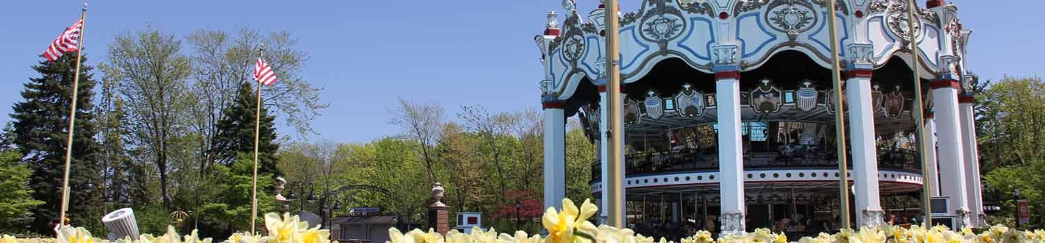 Carousel with daffodils in the foreground
