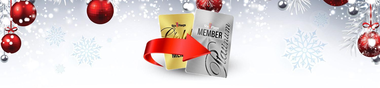 Gold Plus Membership With Free Lifetime Platinum Upgrade