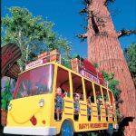 sfmm_daffys_adventure_tours_1440x1533.jpg